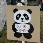 上野で住宅購入ってどう?~リノベ向けマンション探し街歩きレポート(2)~