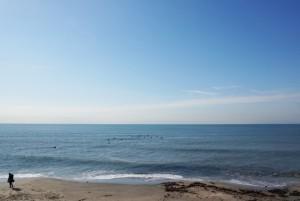 塩害に負けない家づくり。湘南の潮風と共生するリノベーション