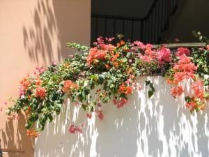 バルコニーを至福の空間に(2)リノベーションで窓の外までトータルコーデ
