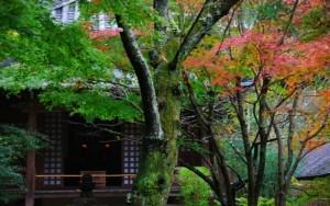 北鎌倉-min