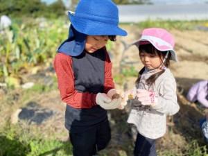 憧れの週末農業~湘南で叶えるスローライフ