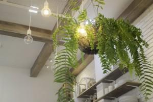 おうち時間を楽しむ!観葉植物で楽しむインテリア