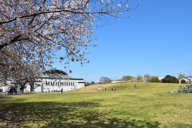 寒川中央公園