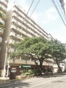 ※新着物件※ 第5桜台ファミリーマンション 2,980万円