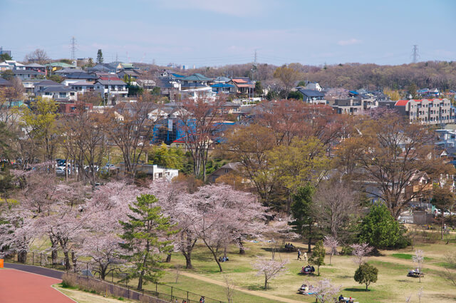 狭間山公園の桜