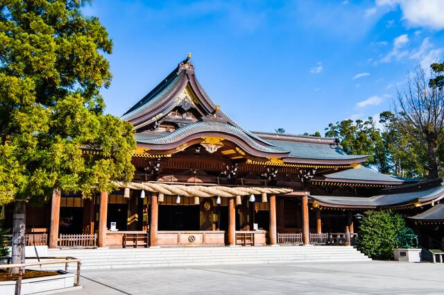 神奈川県寒川町 寒川神社(社殿と御神木)