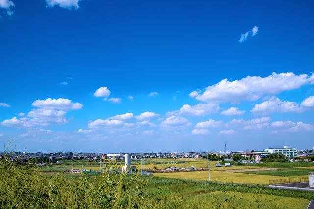 荒川土手 大久保浄水場付近付近からの景観