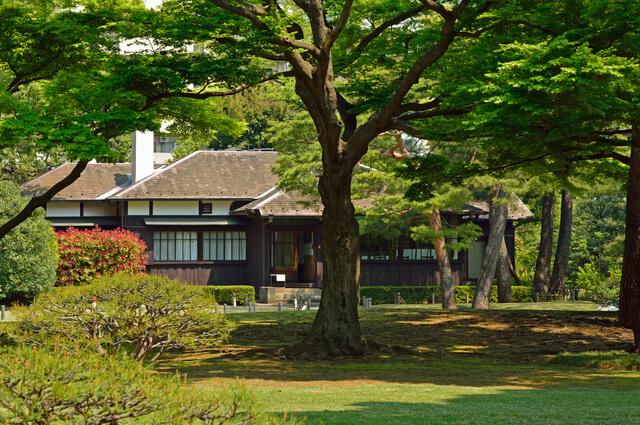 殿ヶ谷戸庭園・庭園の木々と本館