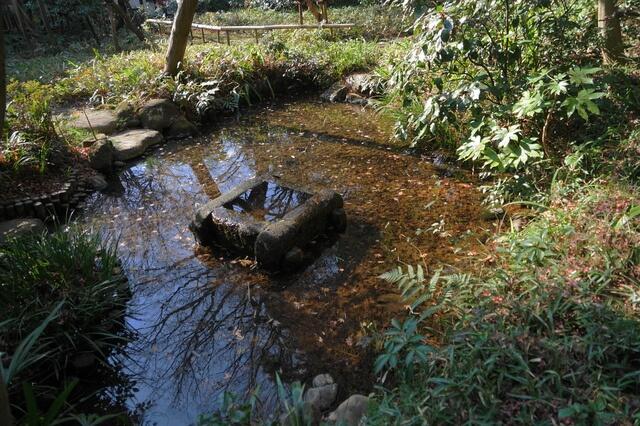 小金井市 ハケの湧水・美術の森緑地