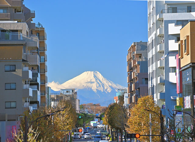 富士見テラスから眺める富士山